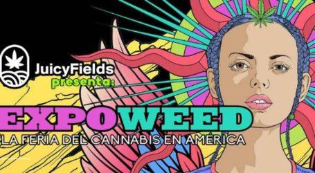 Despega México Expoweed 2021: La feria de cannabis más grande de Latinoamérica. Días 1, 2 y 3 de Octubre